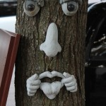 Funny tree that Justin found while I was running